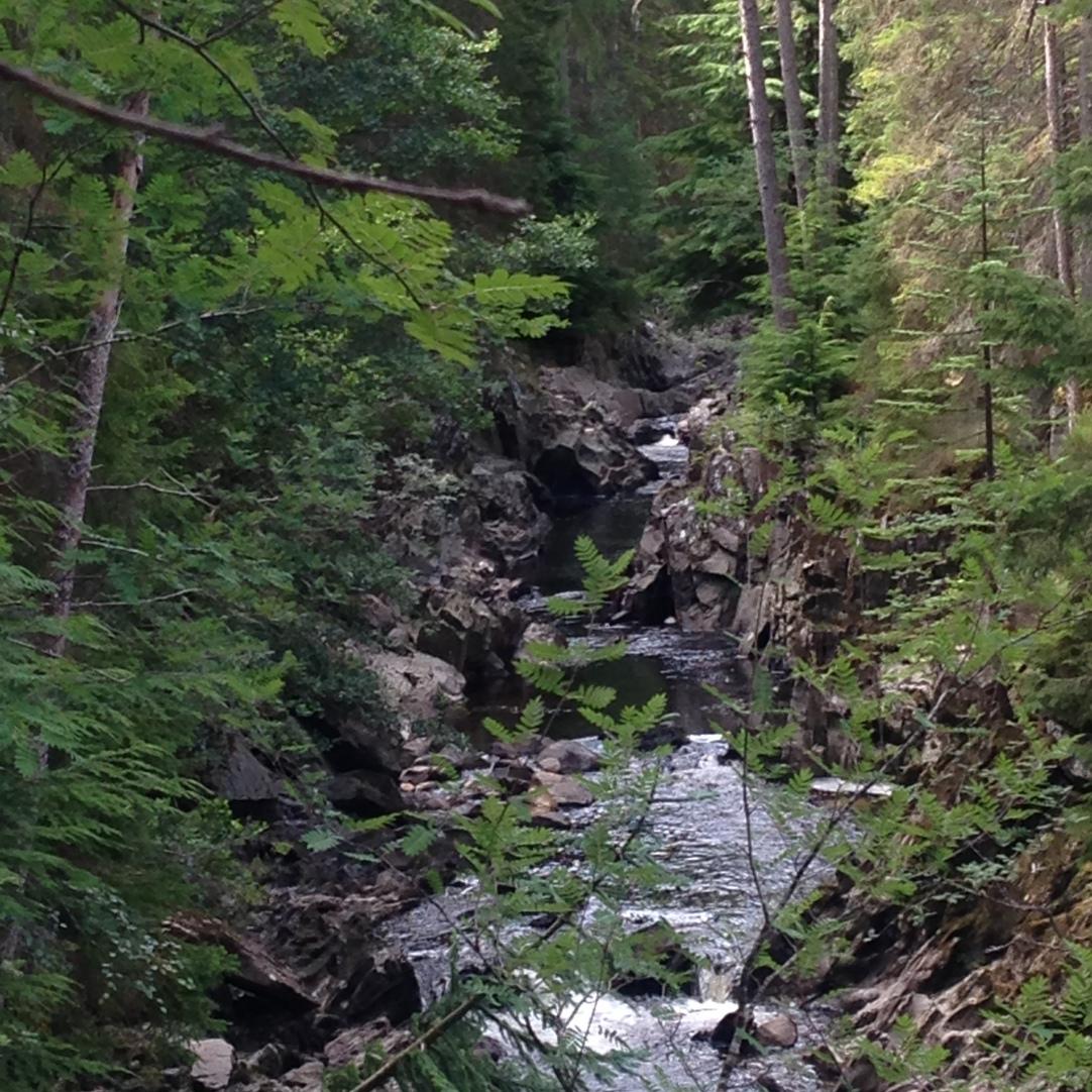 A little stream